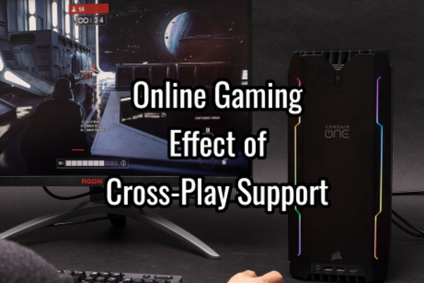 Online Gaming - The Effect of Cross-Play Support